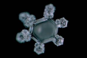 岩深水の結晶